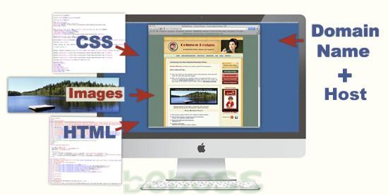Các thành phần cơ bản của website - Hình 2